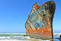 Shipwrecks on the Wild Coast